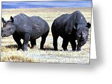 Two Rhinos Greeting Card