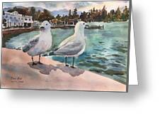 Two Seagulls By The Sea Greeting Card