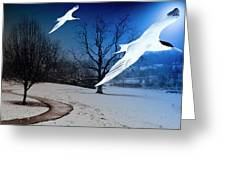 Two Seagulls Fly Together In The Clear Blue Sky Greeting Card by Fernando Cruz