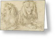 Two Seated Lions Greeting Card