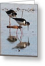 Two Stilts Walk The Pond Greeting Card
