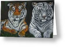 Two Tigers Oil Painting Greeting Card