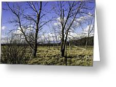 Two Trees Of Blue Greeting Card