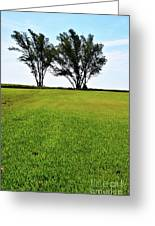 Two Trees On Meadow 15304 Greeting Card