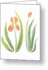 Two Iris II Watercolor Greeting Card