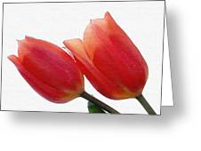 Two Tulips With Watercolour Effect Greeting Card