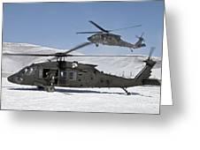 Two U.s. Army Uh-60 Black Hawk Greeting Card