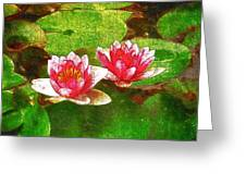 Two Waterlily Flower Greeting Card