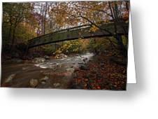 Tye River In Color Greeting Card