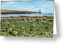 Tynemouth Pier Landscape In Color 2 Greeting Card