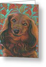 Long-haired Dachshund Greeting Card