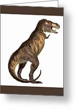 Tyrannosaurus Rex On White Greeting Card