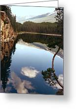 Ultimate Reflection Greeting Card by Shirley Sirois