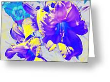 Ultraviolet Daylilies Greeting Card