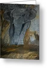 Un Elephant Ca Trompe Enormement Greeting Card