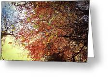 Under An Autumn Sky - No.2 Greeting Card
