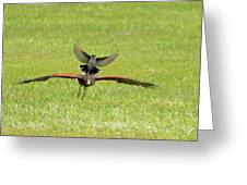 Under Attack Greeting Card