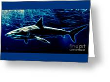 Under Blue Sea Greeting Card