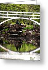 Under The Bridge Greeting Card by Martin Rochefort