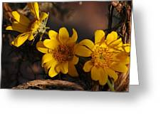 Under The Brush Greeting Card