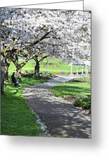 Under The Cherry Blossom Tree Greeting Card
