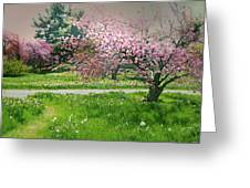 Under The Cherry Tree Greeting Card