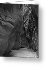 Under The Desert In Black And White Greeting Card