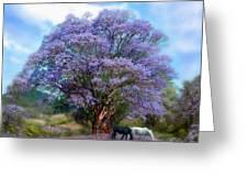 Under The Jacaranda Greeting Card by Carol Cavalaris