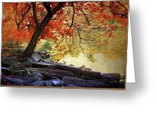 Under The Maple Greeting Card by Jessica Jenney