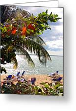 Under The Palms In Puerto Rico Greeting Card