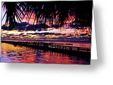 Under The Palms Sunrise Greeting Card