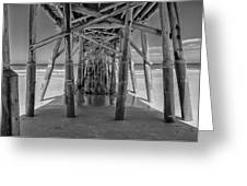 Under The Pier Florida Greeting Card