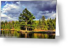 Under The Shade Tree Greeting Card