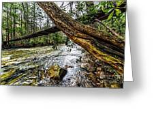 Under The Swinging Bridge Greeting Card