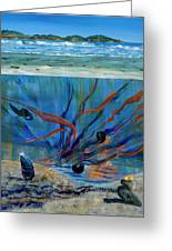 Under Water - Point Of View Greeting Card