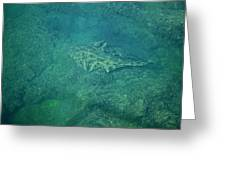 Under Water View Greeting Card