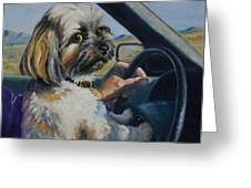 Underage Driver Greeting Card