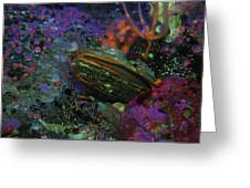 Undersea Clam Greeting Card