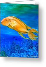 Undersea Journey Greeting Card