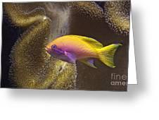 Underwater Dream Greeting Card