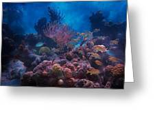 Underwater Paradise Greeting Card
