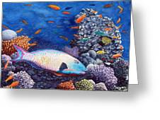 Underwater Treasures Greeting Card