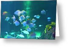 Underwater05 Greeting Card
