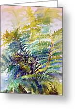 Unfurling Ferns Greeting Card