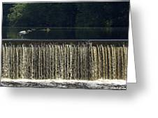 Unicorn Lake Greeting Card