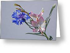 Uniquely Arranged Greeting Card
