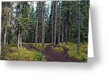 University Of Alaska Fairbanks Trail System Greeting Card