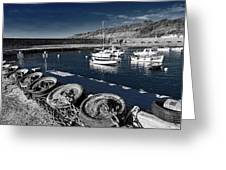Unplugged At The Harbour - Toned Greeting Card