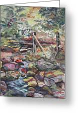 Unseated On Trout Brook Greeting Card