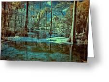 Unseen Wetland Greeting Card